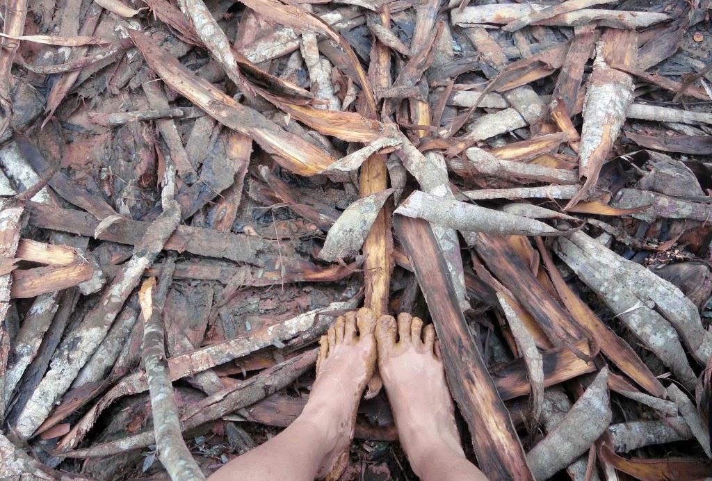 Kulit kayu yang berserakan dalam perjalanan ke Desa Cibeo, Baduy Dalam, Banten