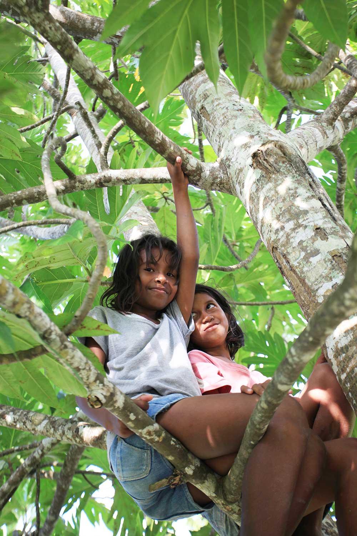 ohelterskelter.com pulau kei